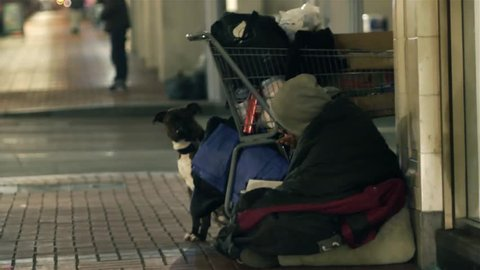 Homeless person with cart and blanket, cold night, with dog