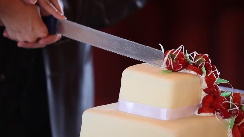 Detail of wedding cake cutting by newlyweds/Wedding cake