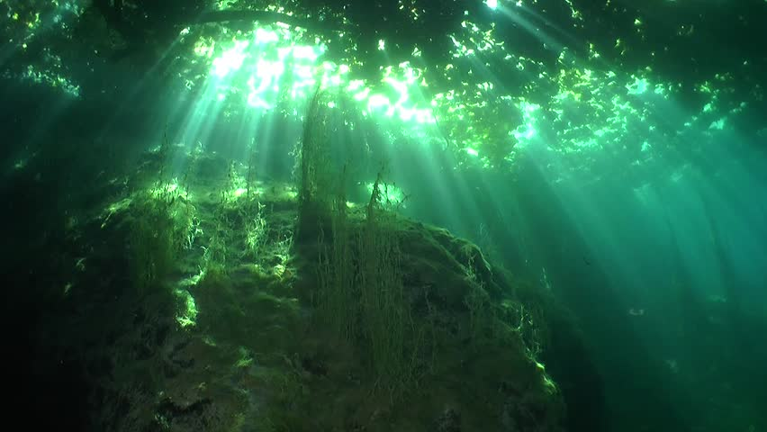 Under the lake floor bed with bright sunbeams light