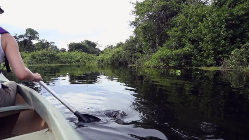 A paddler explores the scenic of Pantanal in Brazil
