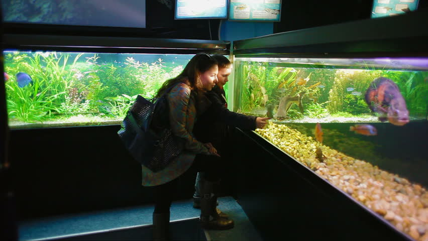 Mother and son on a walk in the Oceanarium.  They look at exotic fish and other marine animals