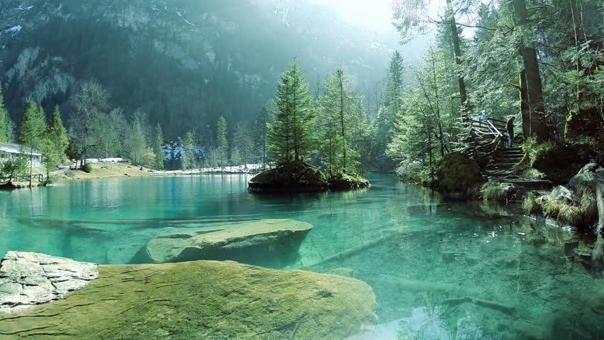 Turquoise Water Background. Park Resort. Beautiful Nature