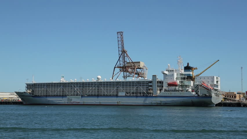 FREMANTLE, WA/AUSTRALIA - FEBRUARY 18, 2014: Live export ship called Al Shuwaikh moored at Fremantle port. There are calls to stop live export of animals after unacceptable death levels on arrival.