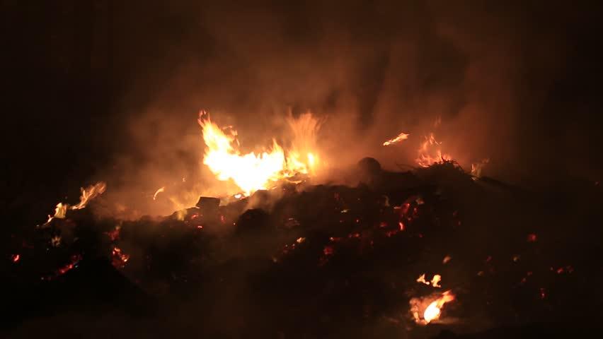 Fire burning   Shutterstock HD Video #6144440