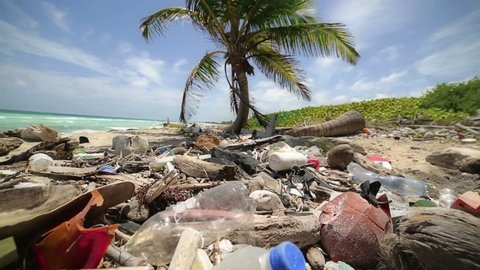 Contamination in marine currents drag garbage to the beaches of the Caribbean