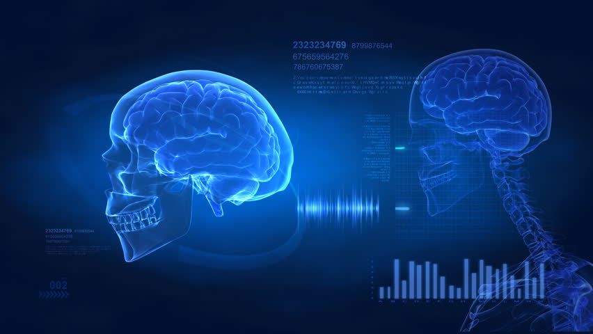 Brain concept -  medical science display in loop