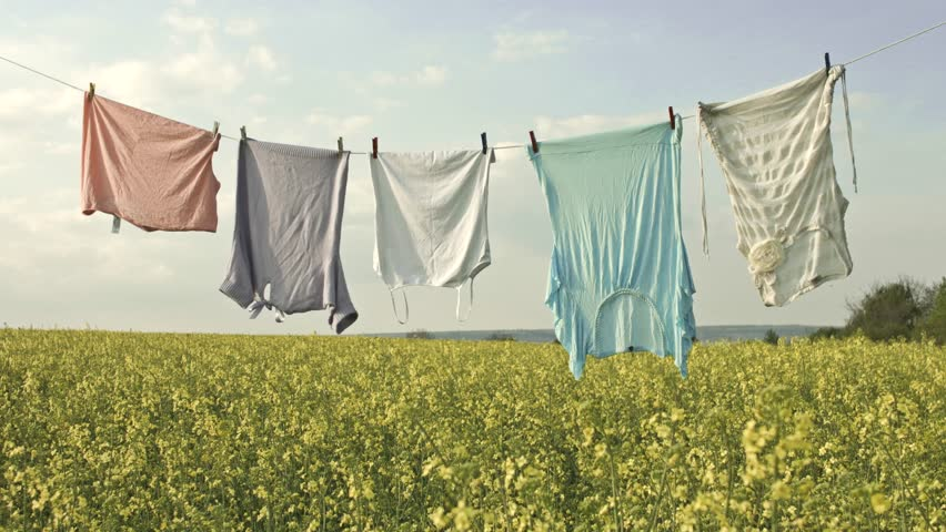 Clean Washed Clothes Line on Field Purity Spring Nature Concept