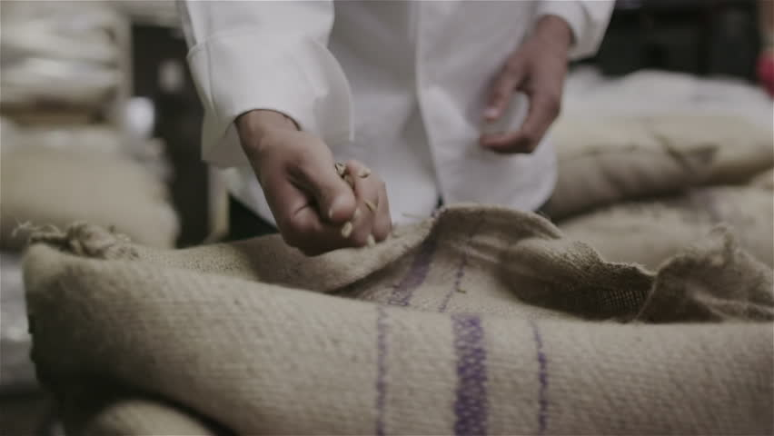Coffee trader takes a handful of fresh raw coffee beans to check the quality #6781900