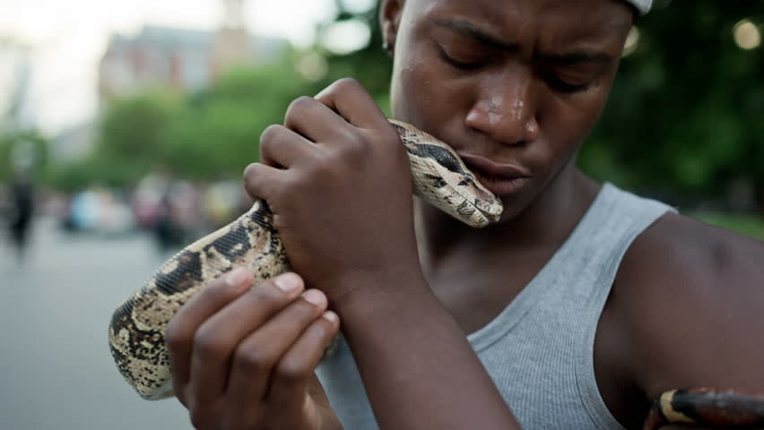 Handsome Young Black Man with Pet Boa Constrictor Snake