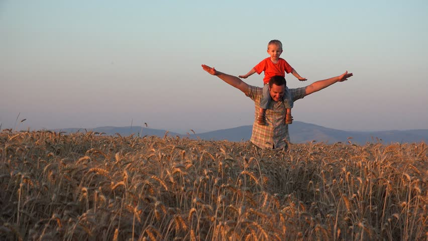 Father and son game, parent giving piggyback ride in wheat culture at sunset