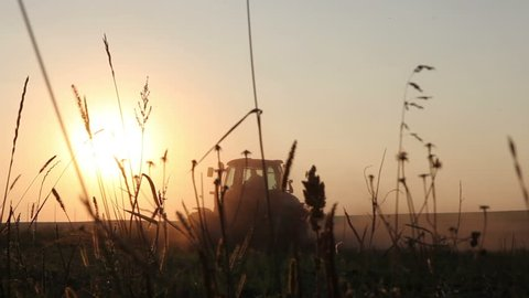 Tractor plowing the black earth plow field at sunset overgrown with weeds