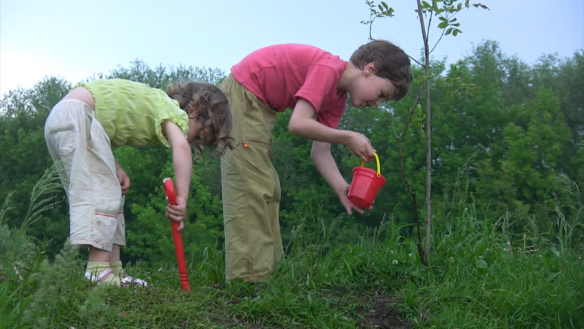 boy with bucket watering young plant, girl with shovel digging hole