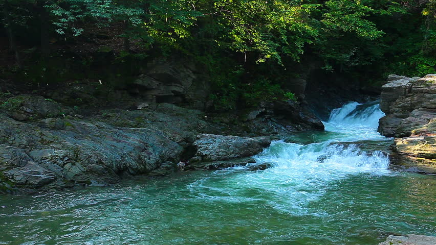 Mountain stream in the forest | Shutterstock HD Video #7243330