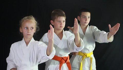 Girl and two boys engaged in karate in the gym