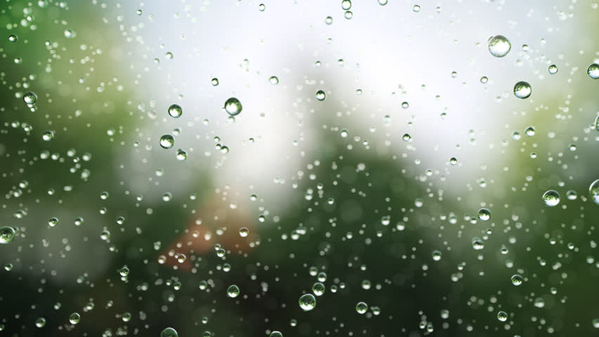 Beautiful rain drops fall in slow motion. Loop