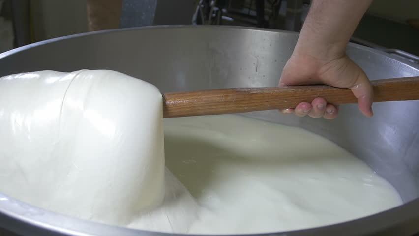 mozzarella production: italian cheese factory, mozzarella, fresh cheese