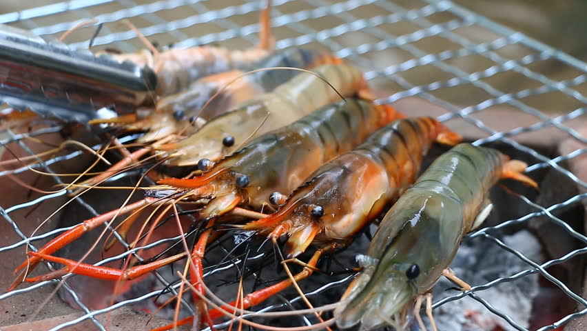 Close up shrimp grilling on the stove | Shutterstock HD Video #8055670