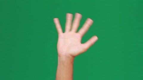 Hand Bye Bye Green Screen