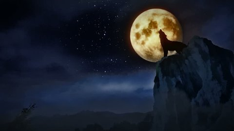 Wolf howling to the moon.