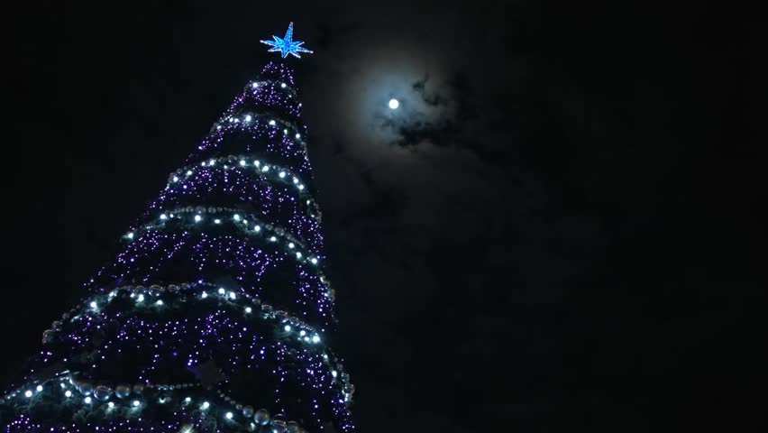 Christmas Tree At Night Under Stock Footage Video 100 Royalty Free