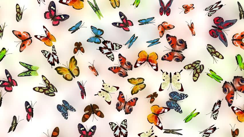butterflies background, 3d animation
