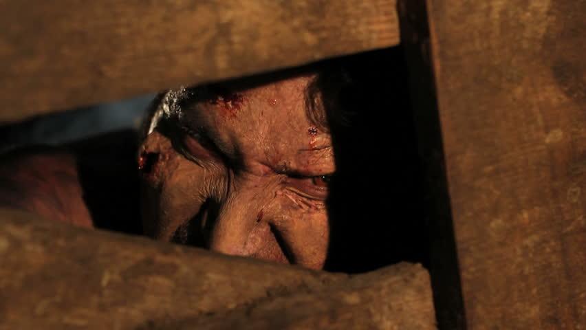 zombie under quarantine tries to break through fence