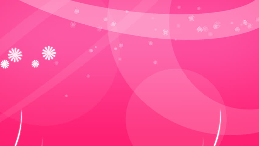 Rotate Wedding Rings On Background Of The Pink Silk Loop