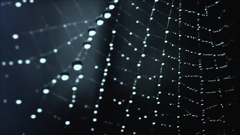 Abstract Spider Web HD Stock Footage. A Close up shot of a Spiders Web with water droplets attached to it from the mist with lens light leaks, filmed on the Blackmagic Cinema Camera. Prores 422.