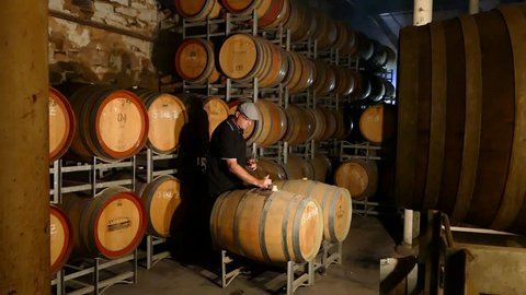 Footage of wine maker testing and tasting red wine in winery cellar featuring rows of oak barrels after vintage and harvest. Include Barossa Valley, Clare valley, Hunter Valley, Tanunda, Yarra,