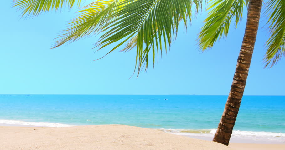 Hd Tropical Island Beach Paradise Wallpapers And Backgrounds: Sunny Day On Sandy Beach With Clear Blue Sky, Warm Sun