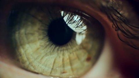 Macro Eye Iris 5