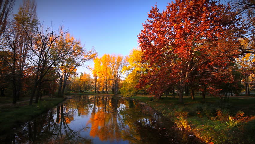 Vivid colors autumn scenery - city park landscape reflecting into water surface