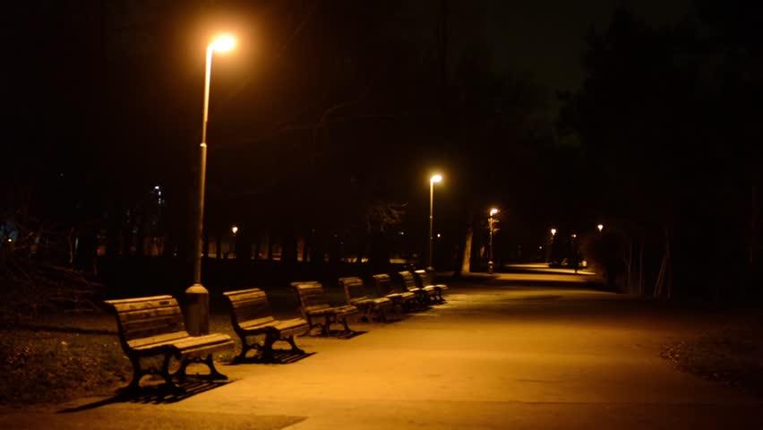 Night Park Benches And Stock Videoer 100 Royaltyfri 9462710