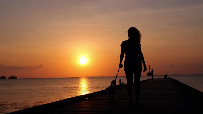 Bikini Female Silhouette On Yacht At Sunset Stock Footage Video 2750942  Shutterstock-6638