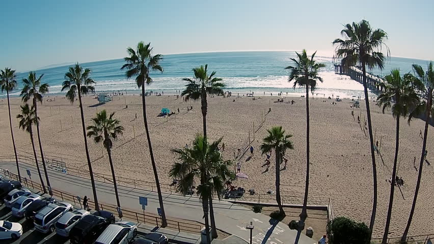 Aerial video revealing the beach passing the palm trees, overlooking the Manhattan Beach Pier in the background. The image also reveals a beach volleyball court