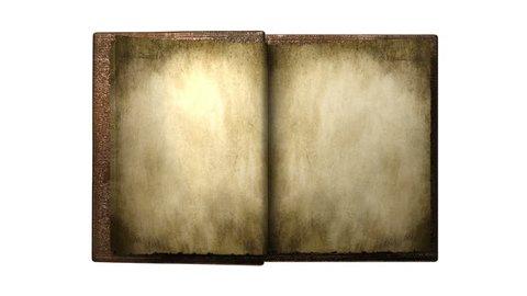 Animated ORNAMENT BOOK