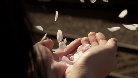 Young Woman Holds A Handful Of Flower Petals, They Blow Away In The Wind, Train Passes By In Background (Slow Motion)